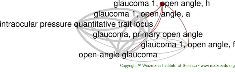 Diseases related to Glaucoma 1, Open Angle, H