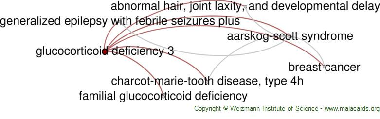 Diseases related to Glucocorticoid Deficiency 3