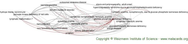 Diseases related to Glucose Phosphate Isomerase Deficiency