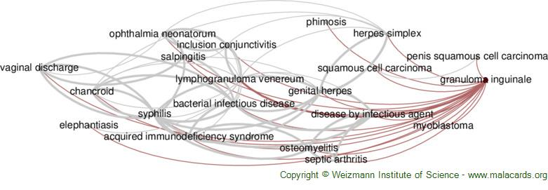 Diseases related to Granuloma Inguinale
