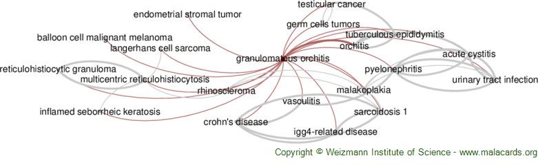 Diseases related to Granulomatous Orchitis
