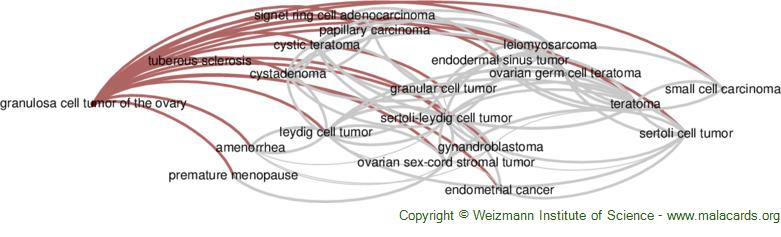 Diseases related to Granulosa Cell Tumor of the Ovary