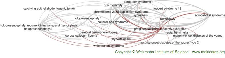 Diseases related to Greig Cephalopolysyndactyly Syndrome