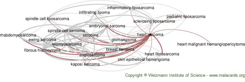 Diseases related to Heart Sarcoma