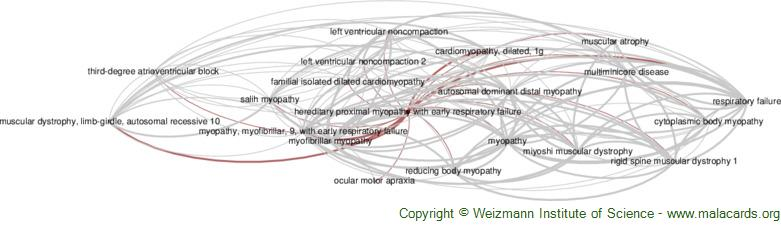 Diseases related to Hereditary Proximal Myopathy with Early Respiratory Failure