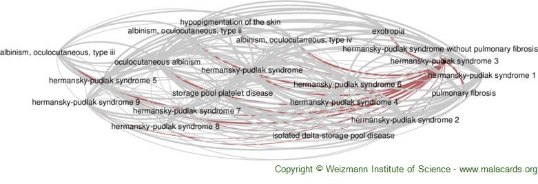 Diseases related to Hermansky-Pudlak Syndrome 3