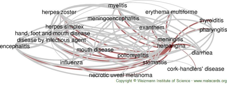 Diseases related to Herpangina