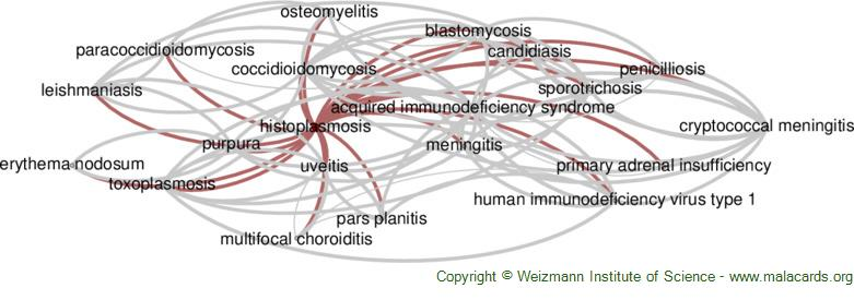 Diseases related to Histoplasmosis