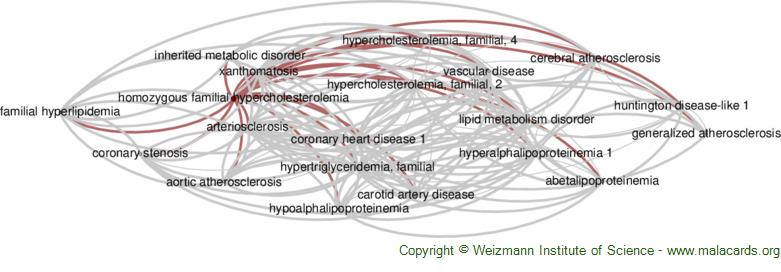 Diseases related to Homozygous Familial Hypercholesterolemia