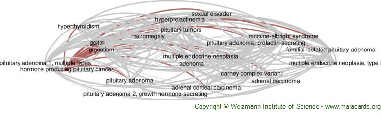 Diseases related to Hormone Producing Pituitary Cancer