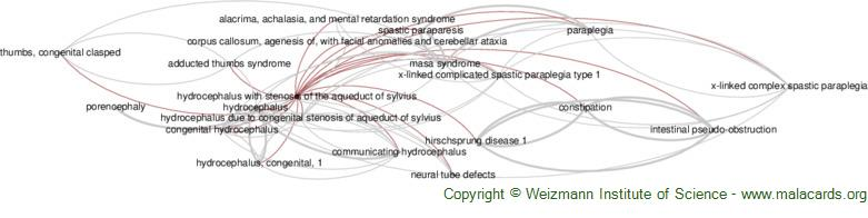 Diseases related to Hydrocephalus with Stenosis of the Aqueduct of Sylvius