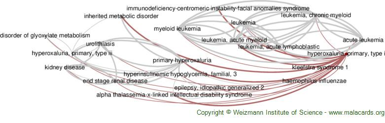 Diseases related to Hyperoxaluria, Primary, Type I