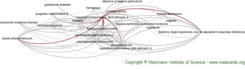 Diseases related to Hyperphenylalaninemia, Bh4-Deficient, a