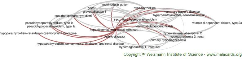 Diseases related to Hypocalcemia, Autosomal Dominant 1