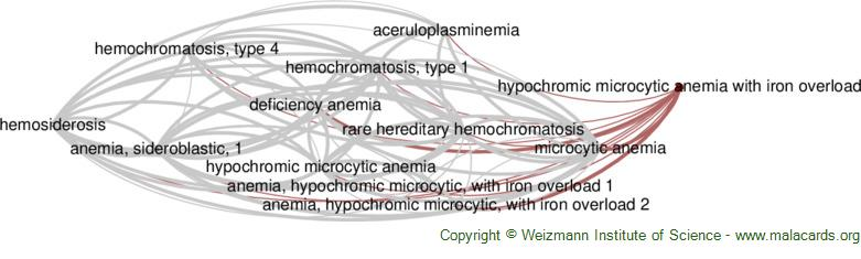Diseases related to Hypochromic Microcytic Anemia with Iron Overload