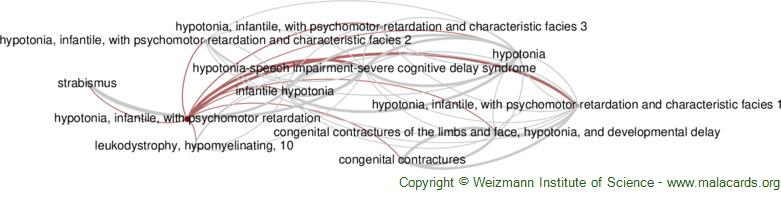 Diseases related to Hypotonia, Infantile, with Psychomotor Retardation