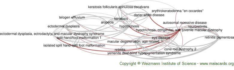 Diseases related to Hypotrichosis, Congenital, with Juvenile Macular Dystrophy