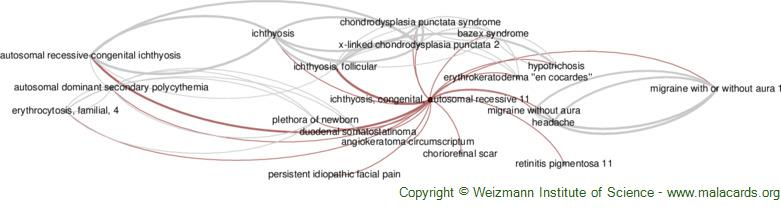 Diseases related to Ichthyosis, Congenital, Autosomal Recessive 11