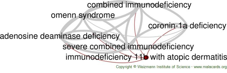 Diseases related to Immunodeficiency 11b with Atopic Dermatitis