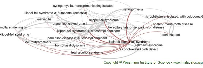 Diseases related to Isolated Klippel-Feil Syndrome