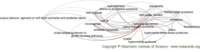 Diseases related to Juberg-Hayward Syndrome