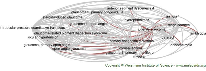 Diseases related to Juvenile Glaucoma
