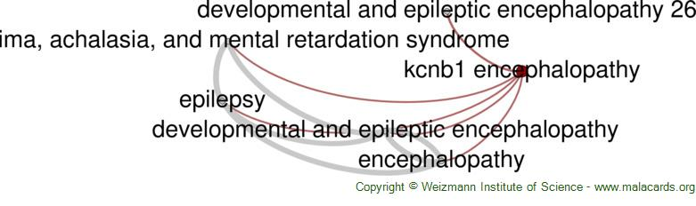 Diseases related to Kcnb1 Encephalopathy