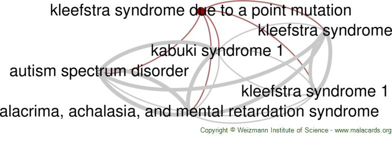Diseases related to Kleefstra Syndrome Due to a Point Mutation