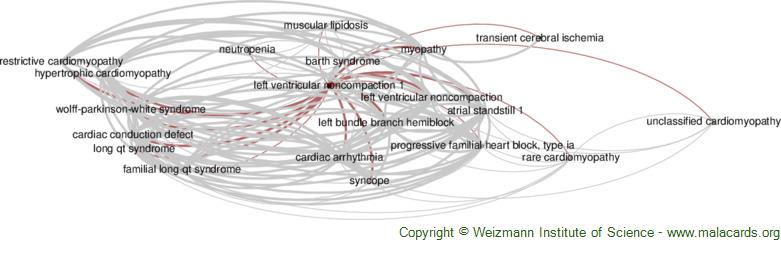 Diseases related to Left Ventricular Noncompaction 1