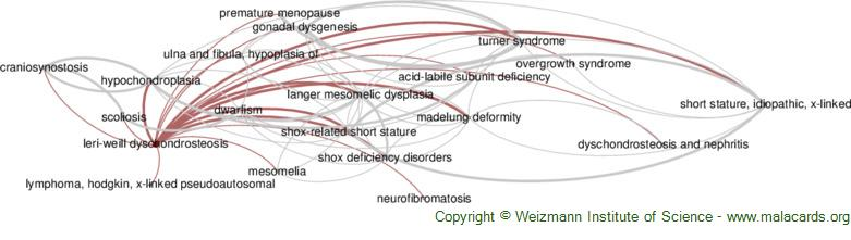 Diseases related to Leri-Weill Dyschondrosteosis