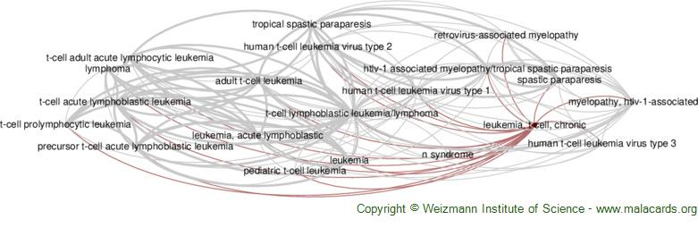 Diseases related to Leukemia, T-Cell, Chronic