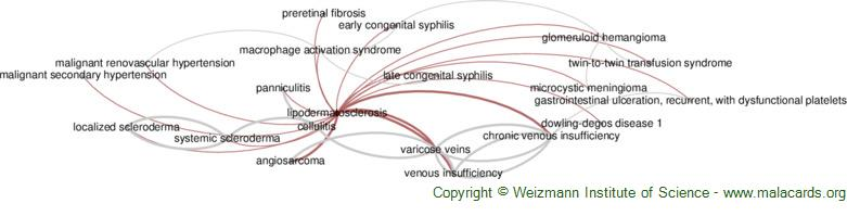 Diseases related to Lipodermatosclerosis