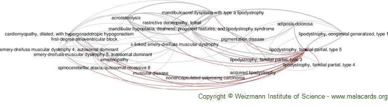 Diseases related to Lipodystrophy, Familial Partial, Type 5