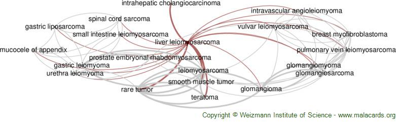 Diseases related to Liver Leiomyosarcoma