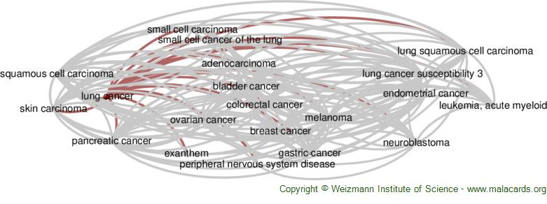 Diseases related to Lung Cancer