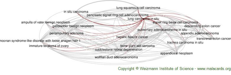 Diseases related to Lung Carcinoma in Situ