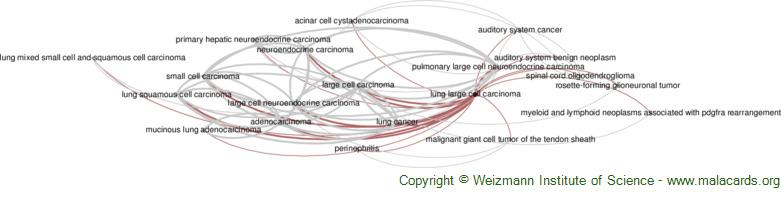 Diseases related to Lung Large Cell Carcinoma