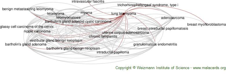 Diseases related to Lung Leiomyoma