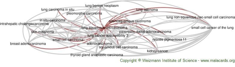 Diseases related to Lung Squamous Cell Carcinoma