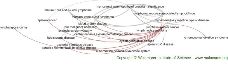 Diseases related to Lymphatic System Cancer