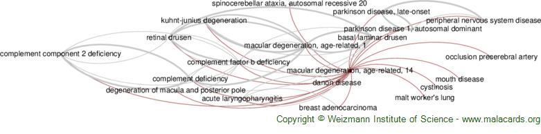 Diseases related to Macular Degeneration, Age-Related, 14