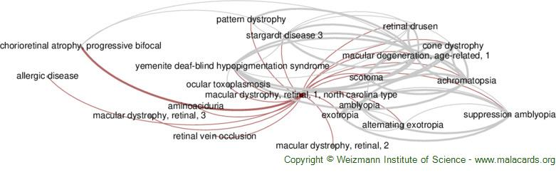 Diseases related to Macular Dystrophy, Retinal, 1, North Carolina Type