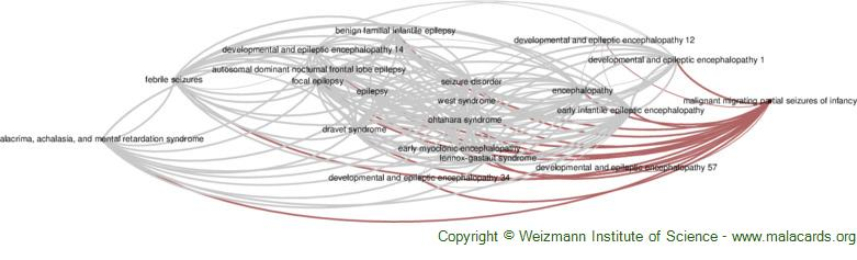 Diseases related to Malignant Migrating Partial Seizures of Infancy