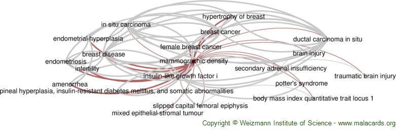 Diseases related to Mammographic Density