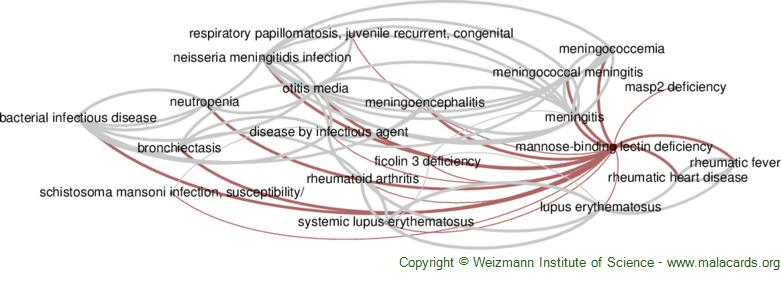 Diseases related to Mannose-Binding Lectin Deficiency