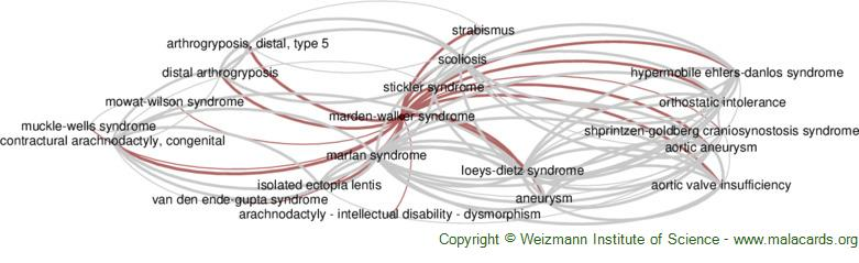 Diseases related to Marden-Walker Syndrome