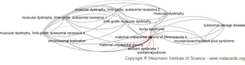 Diseases related to Maternal Uniparental Disomy of Chromosome 4