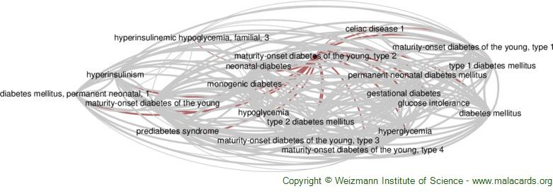 Diseases related to Maturity-Onset Diabetes of the Young, Type 2