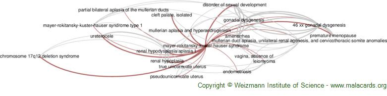 Diseases related to Mayer-Rokitansky-Kuster-Hauser Syndrome