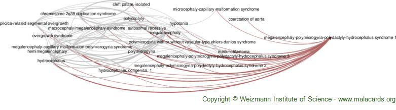 Diseases related to Megalencephaly-Polymicrogyria-Polydactyly-Hydrocephalus Syndrome 1